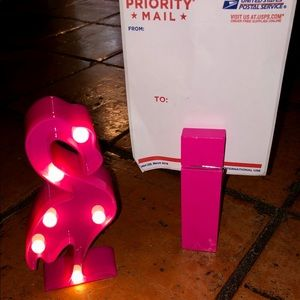 Pink oversized photo clip and light up flamingo